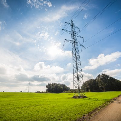 power line over road 5 dog farm