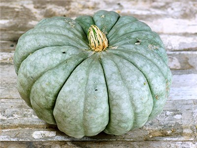 greenish pumpking variety called jarrahdale