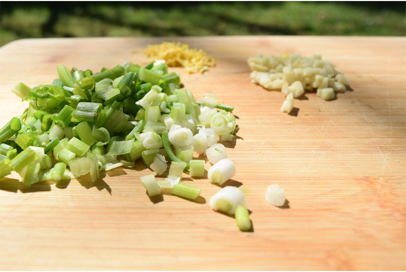 close up of chopped green onion, garlic and lemon zest