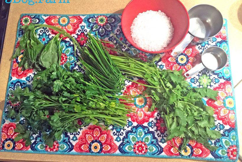 herbs and salt on brightly colored mat