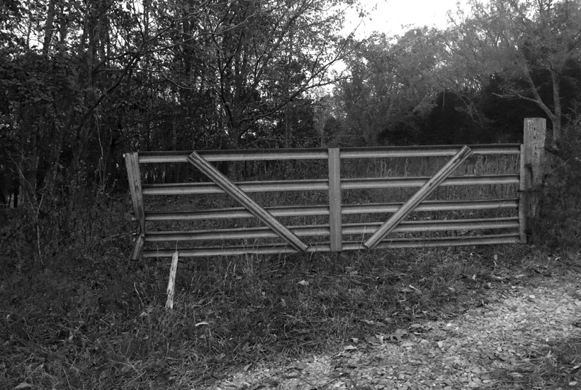 black and white photo of metal gate