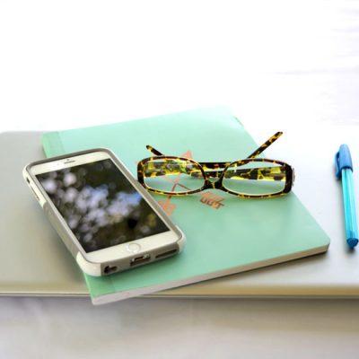computer llight blue journal and leopard glasses