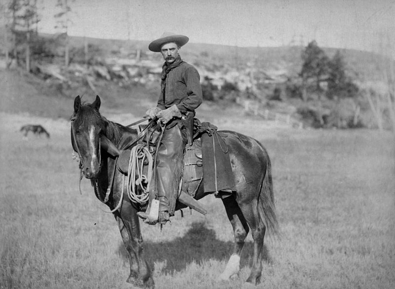old cowboy on horse