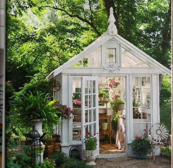 cute greenhouse 5 dogfarm