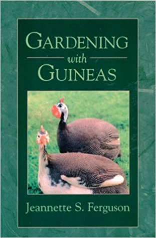 gardening with guineas book