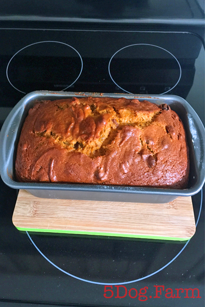 Pumpkin Bread loaf 5 dog farm