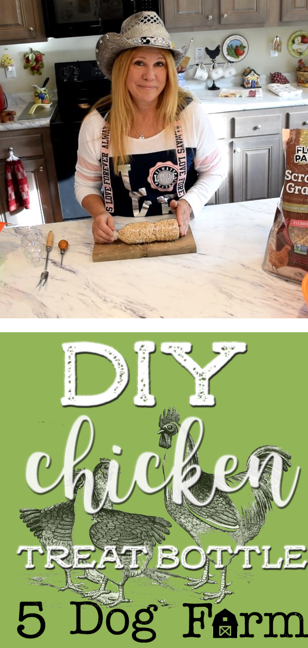 DIY Chicken Treat Bottle Pin 5DF