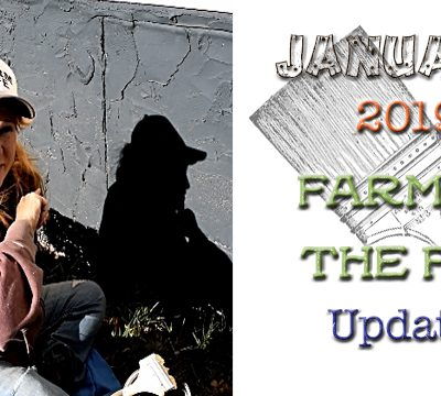 january 2019 update 5 dog farm