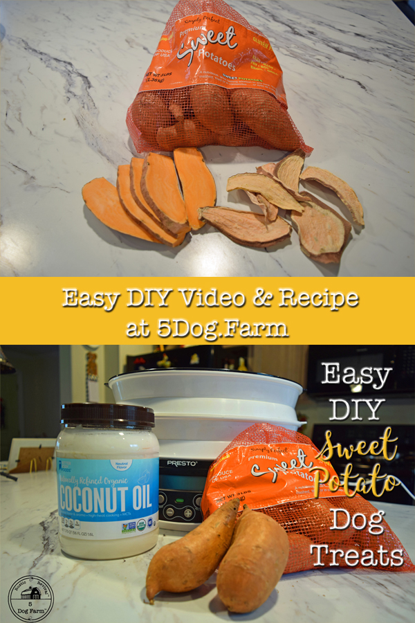 Easy DIY Sweet Potato Dog Treats from 5Dog.Farm