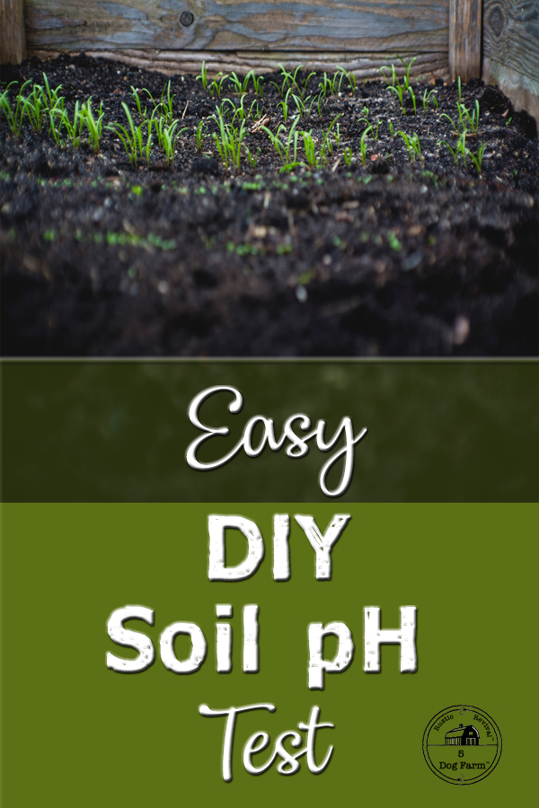 Test the pH of your Soil!