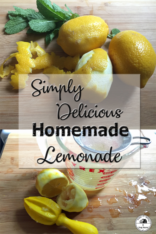 The Best Lemonade Recipe Ever! 5Dog.Farm