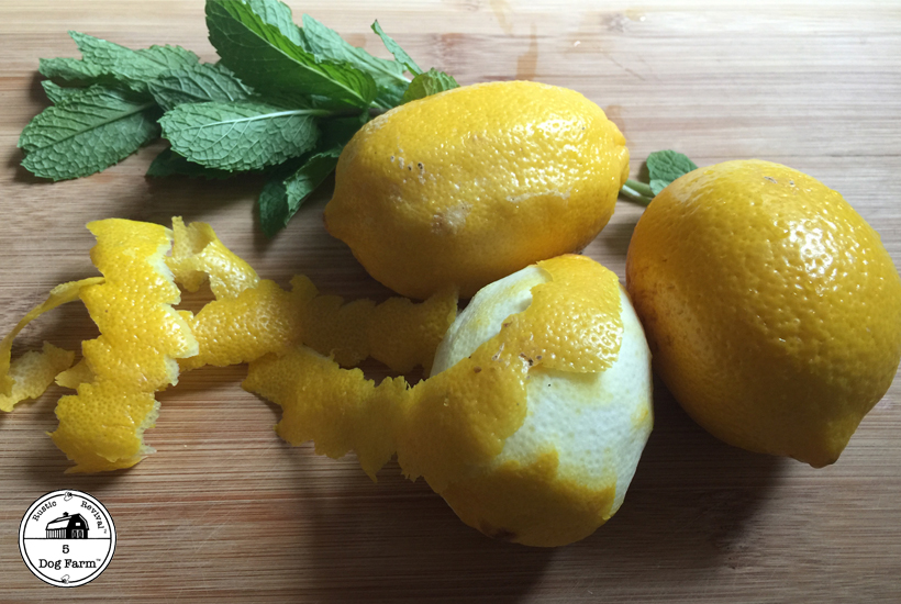 lemons and fresh mint 5 dog farm