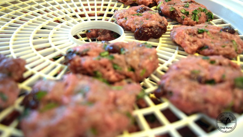 Homemade Ground Beef Dog Treats - 5 Dog