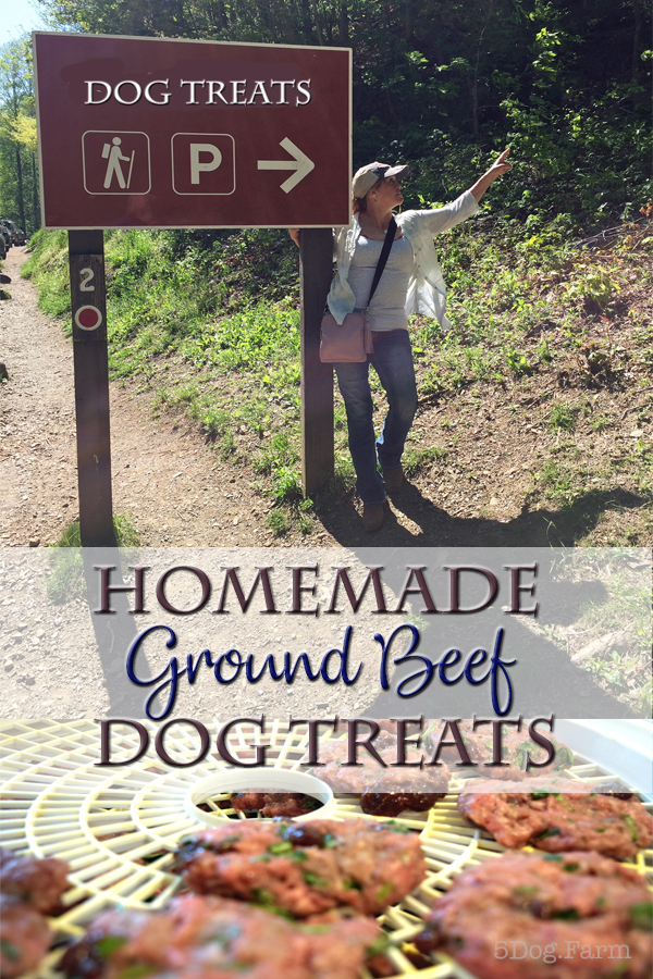 DIY Ground Beef Dog Treats from 5Dog.Farm