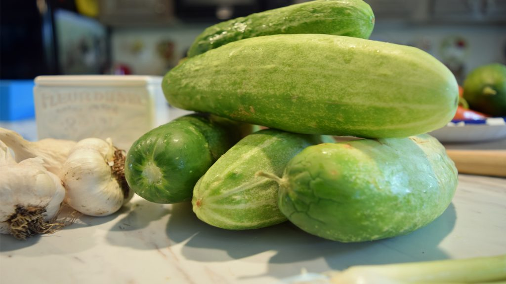 a pile of cucumbers 5dogfarm