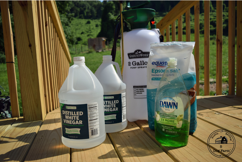 ingredients for homemade weed killer 5DogFarm
