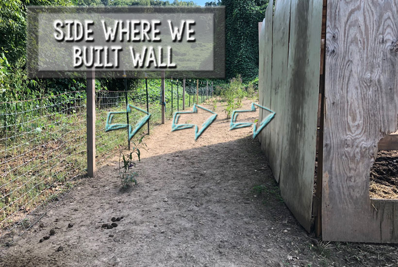 Side where wall will be built 5 Dog Farm