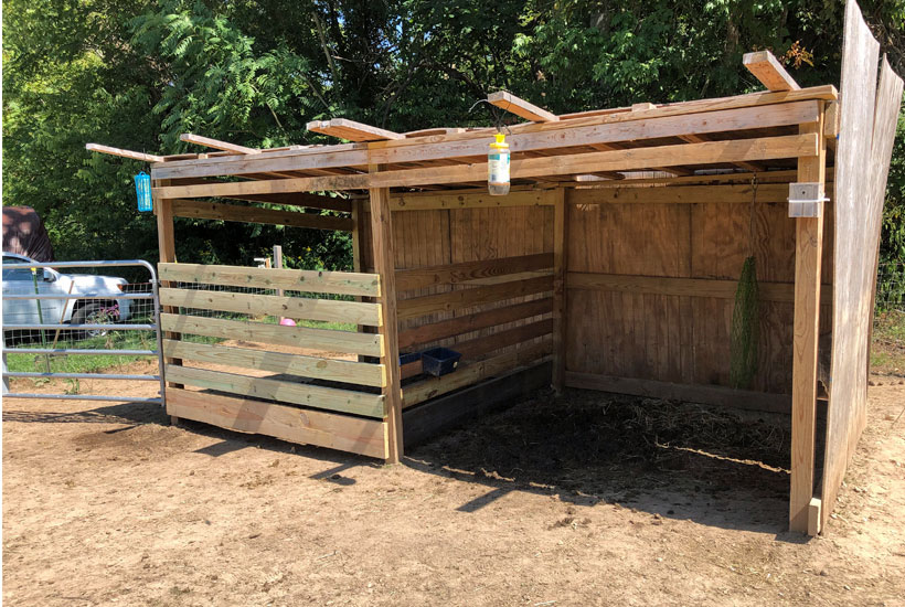 shed walls and gate up 5 Dog Farm