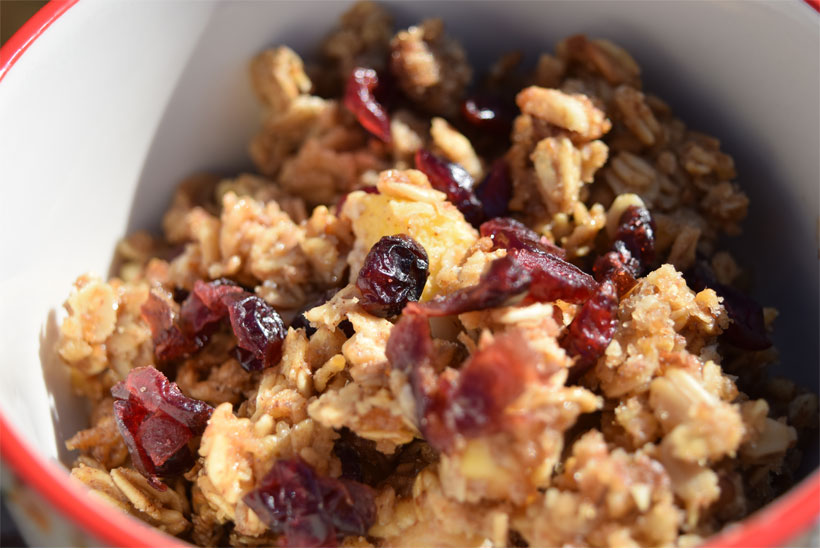 close up of cranberry oatmeal breakfast bake 5dogfarm