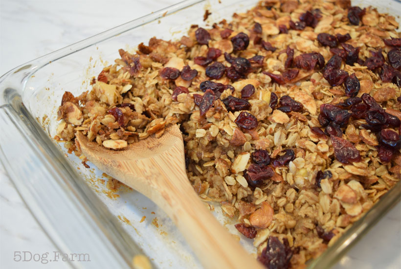 Cranberry Oatmeal Breakfast Bake Recipe 5 Dog Farm