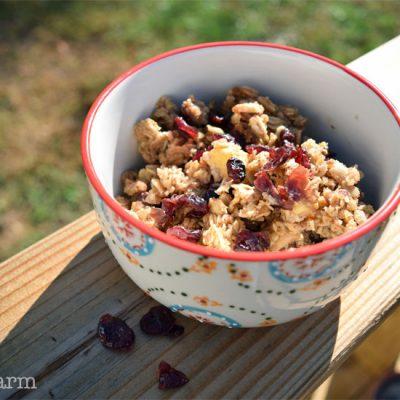 close up cranberry oatmeal 5dog.farm