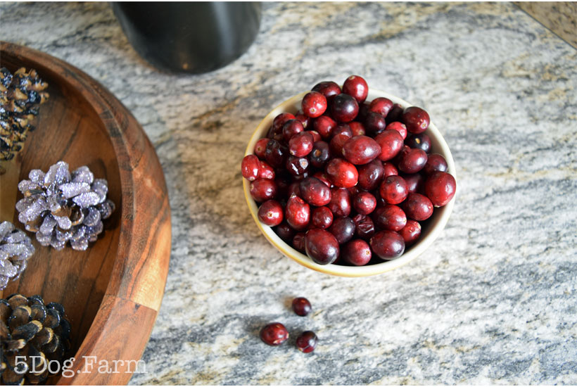 Easy Homemade Cranberry Relish from 5DogFarm