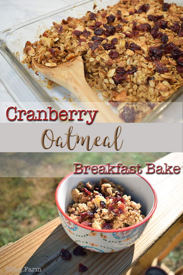 Cranberry Oatmeal Breakfast Bake Make Ahead 5Dog.Farm