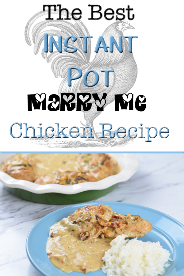 The Best Instant Pot Marry Me Chicken 5 Dog Farm