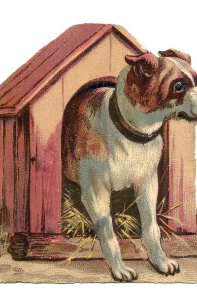 vintage dog in doghouse