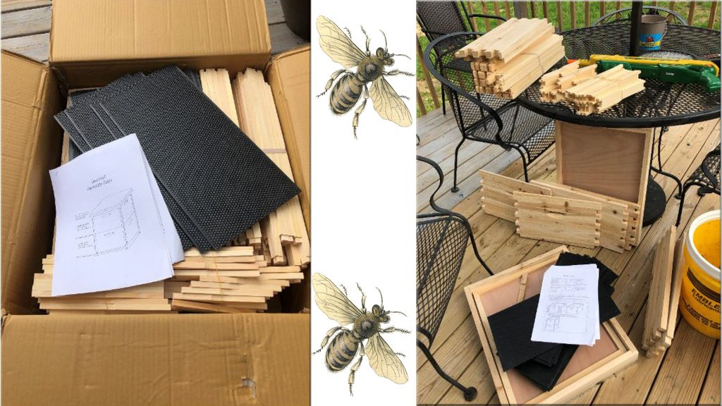 unpacking of bee hive