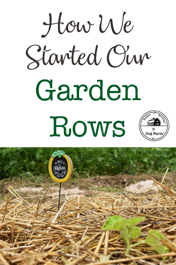 How To Start A Garden Row I 5DogFarm