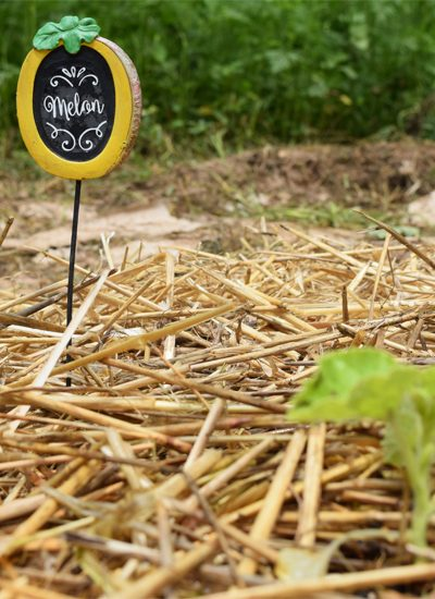 straw garden row with melon sign