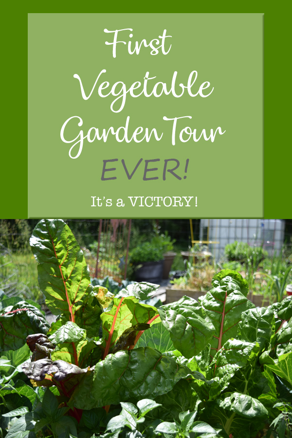 Join us for our First Vegetable Garden Tour EVER! 5Dog.Farm