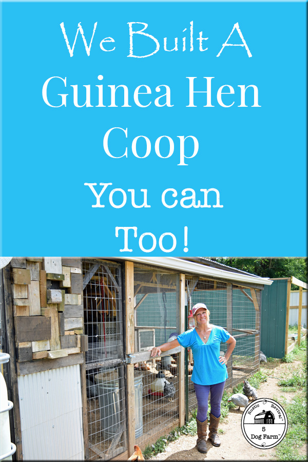 build a guinea hen coop
