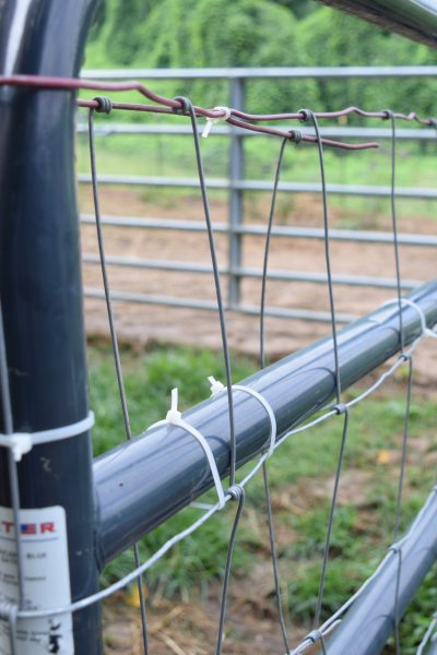 metal gate with barrier
